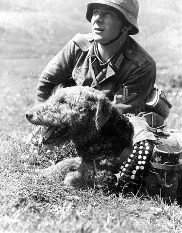 Война фото второй мировой войны